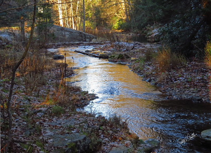 Late afternoon sun on Wykoff Run,Pennsylvania