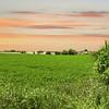 Pa. Amish Farm scenic