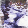 A small Mountain Stream covered with snow and ice. A very peaceful setting.