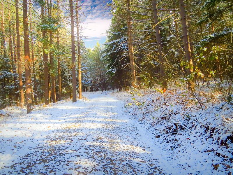 First snow storm.