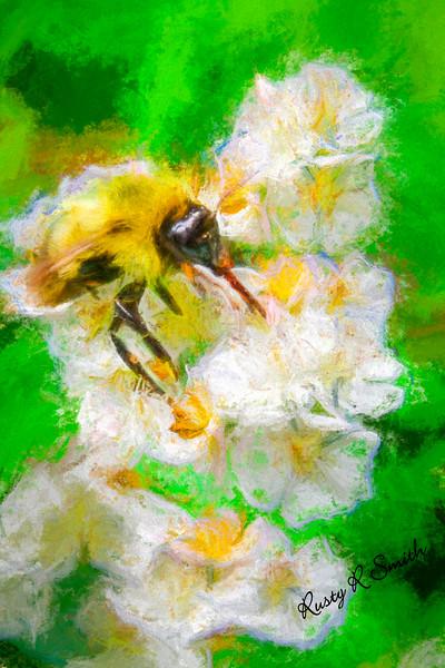 art photo bee on flower