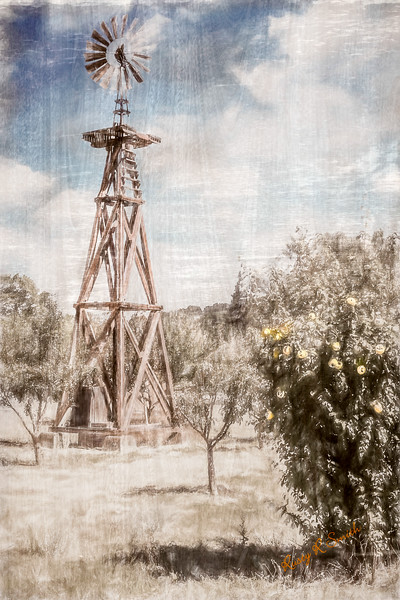 Old windmill in apple orchard.