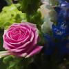 A beautiful flower arrangement.