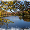 An Art photograph of a pond with bright fall colors on the shore