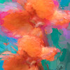 Abstract digital art photograph of a single canna flower.