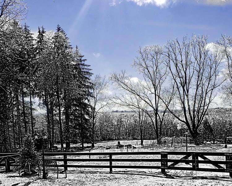 Icy farm scene in Eastern Connecticut.