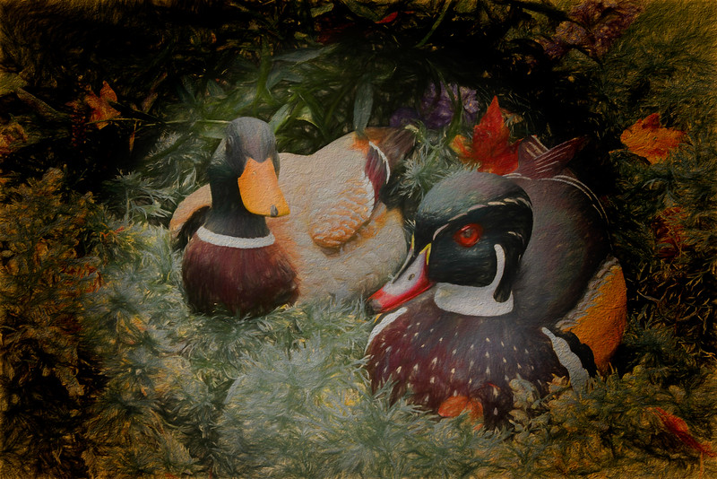 still life two ducks