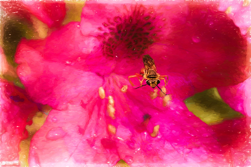 A rhododendron,blossum and a bug.