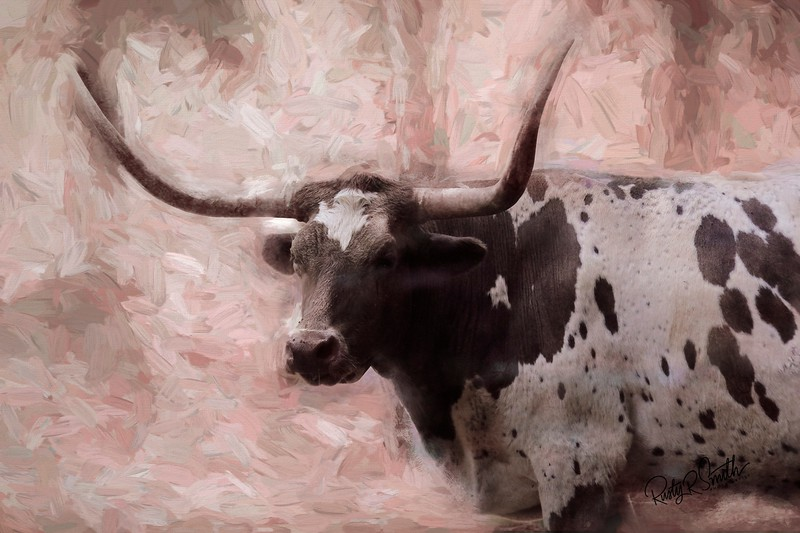 Art portrait of a Texas Long horn steer.