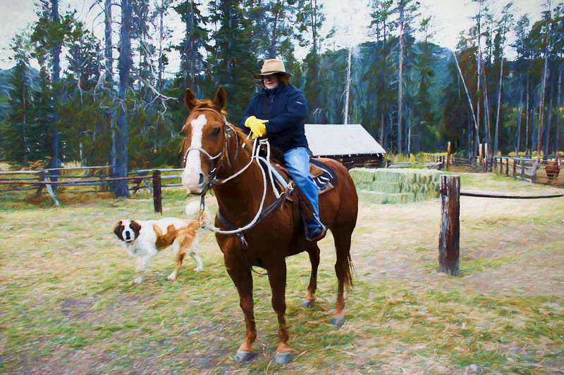 A woman sitting on a horse with St. Bernard dog looks on. Bear Creek  Guest Ranch Montana.