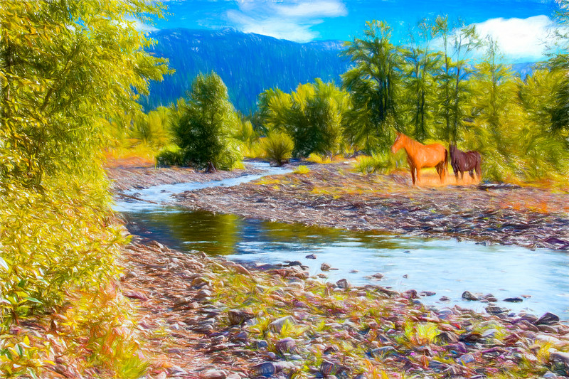 Two Horses in Montana Landscape.