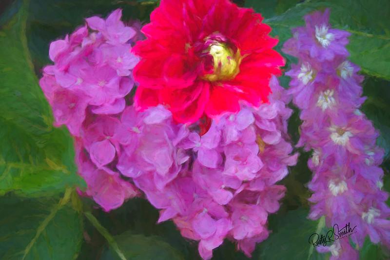 A composite photograph of backyard flowers.
