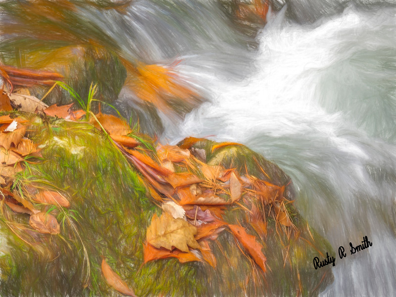 Fallen orange leaves,pine needles and fast flowing water.