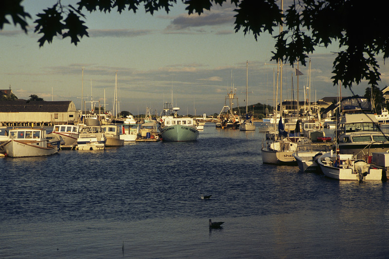 Horizontal scenic late afternoon view of the boats in York Harbor Maine.