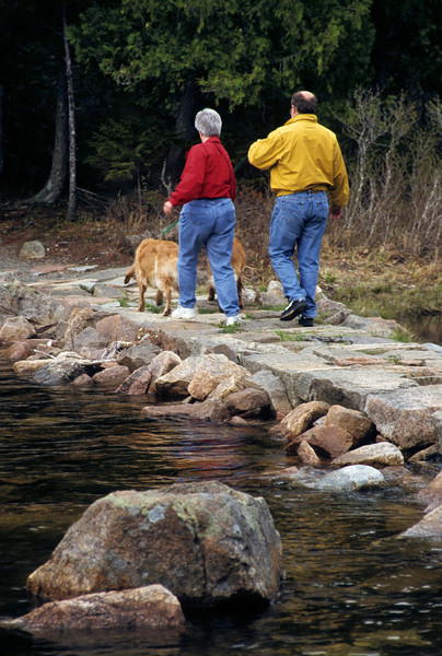 A vertical stock photograph of a middle aged couple walking  their two golden retrievers around a pond in Maine.