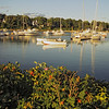 A vertical stock photo showing a Late afternoon view of the boats in York Harbor Maine.
