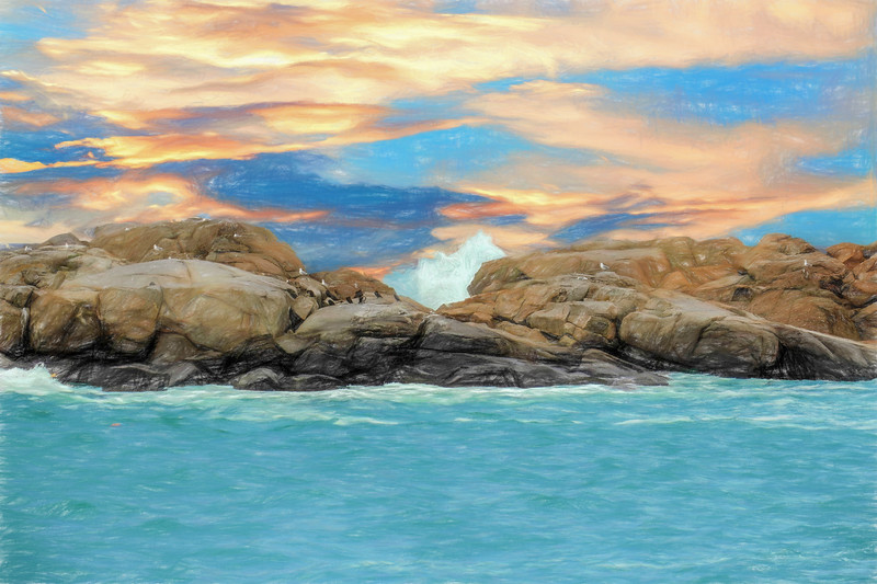 Birds on Ocean Rocks