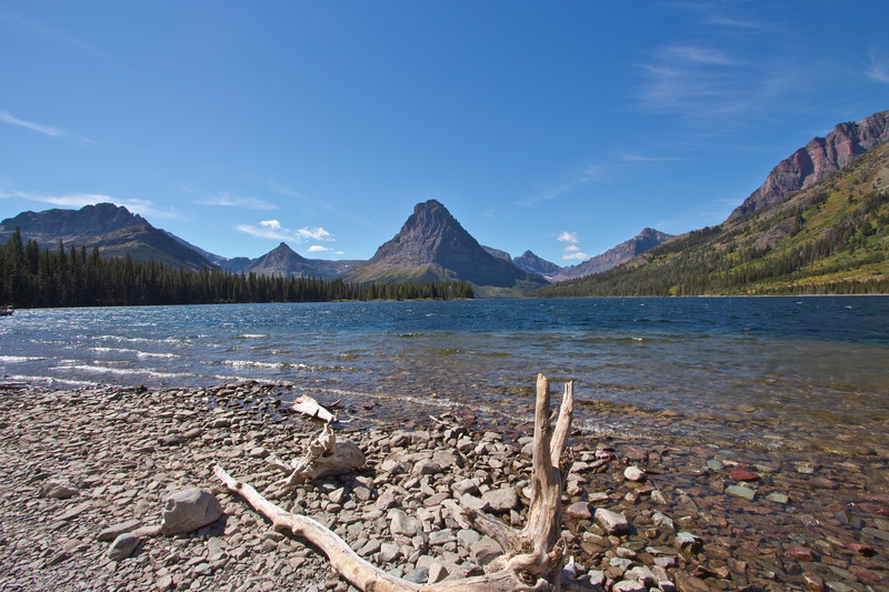 A horizontal stock photograph of  the mountains surrounding the Two Medicine area of Glacier National Park with drift wood on the beach.