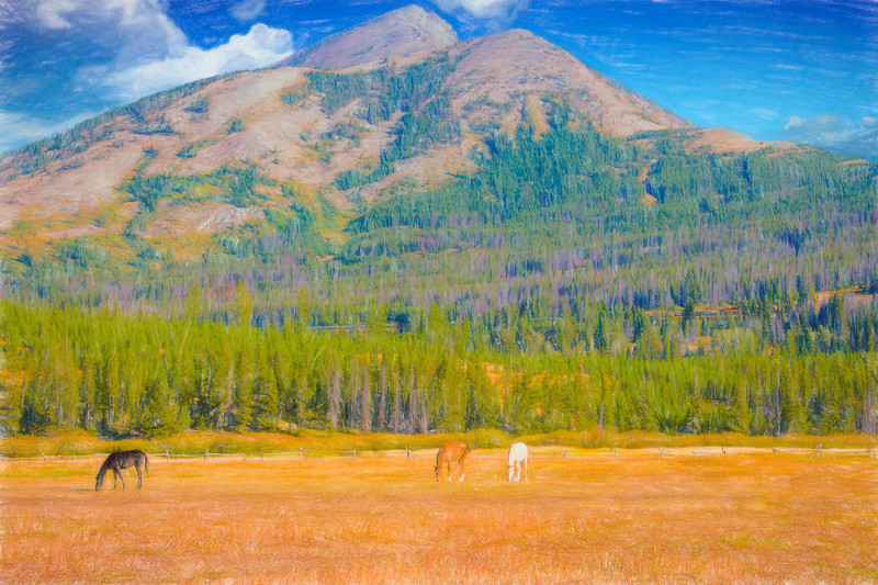 A wide view othree horses in pasture in front of Elk Mountain,Essex Montana