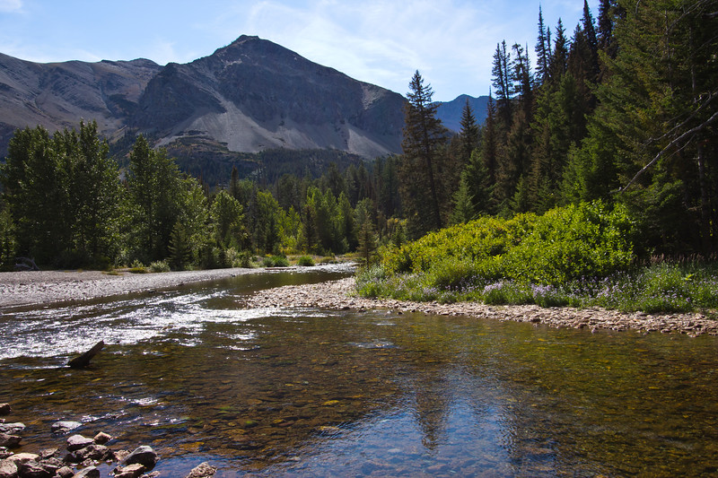 A horizontal stock photograph of running eagle falls river  in the two medicine area of Glacier Nat. Park. Mountain in background.