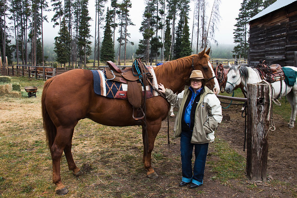 A horizontal stock photograph of a woman standing with her saddled trail horse. Bear Creek Ranch in Essex Montana.