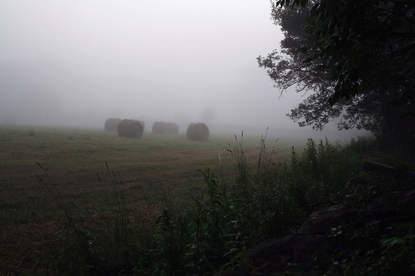 Horizontal stock photograph showing rolled hay bales in a field with early morning fog.