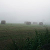 Vertical stock photograph showing rolled hay bales in a field with early morning fog.