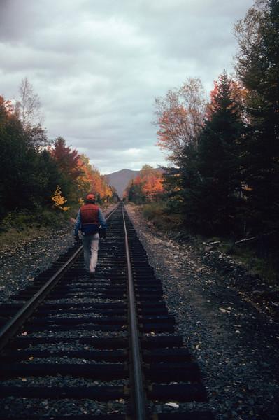 A vertical stock photograph of a man walking on railroad tracks enjoying the fall foliage.