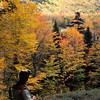 A vertical stock photograph of a young man viewing the fall foliage in the White Mountains New Hampshire.