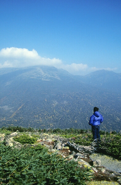 A Vertical Stock Photograph of a young boy standing on an overlook near the Mt. Washington auto road.