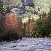 A Vertical Stock Photograph of a man walking beside the Swift river in the White Mountains of New Hampshire