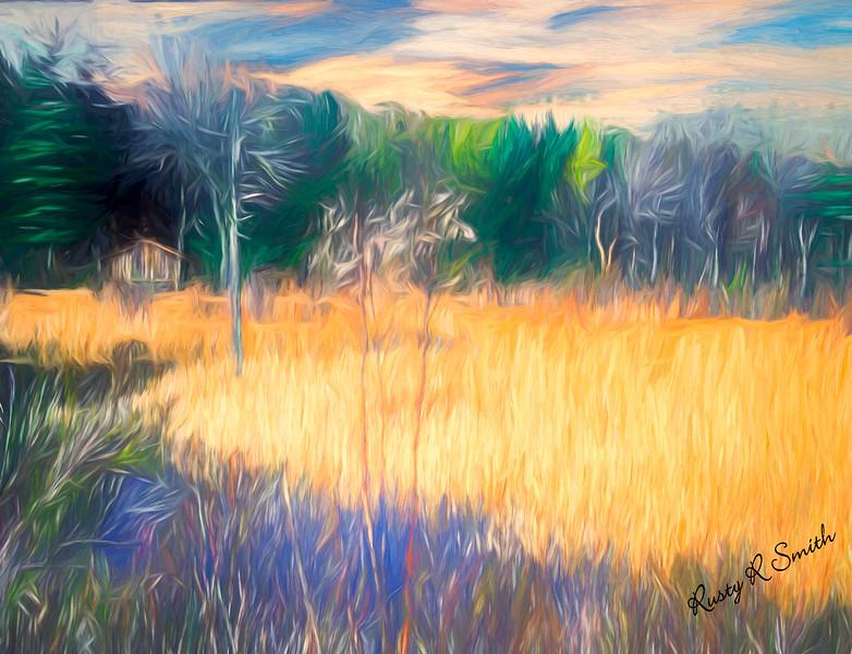 Cabin in a marsh