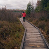 A vertical stock photograph of a man in a red parka walking on the boardwalk,part of the Bog trail in Black Moshannon State Park  near Philipsburg Pennsylvania.