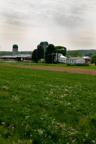 A vertical stock photo of a working dairy farm in central Pa.