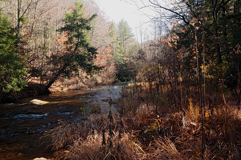A horizontal stock photo of six mile run trout stream.  A beautiful Fall morning in Central Pennsylvania. Near Philipsburg,Pa.