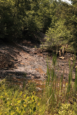 A vertical stock photograph of acid mine drainage in central pennsylvania. A large environmental problem in Pennsylvania.