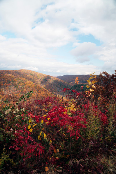 A vertical fine art photo of the mountains of central Pennsylvania in beautifull Autumn color.