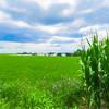 An Amish farm scenic Pennsylvania