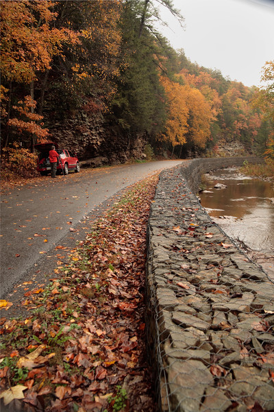 A Vertical Stock Photograph of a wet fall day in Trough Creek State Park.