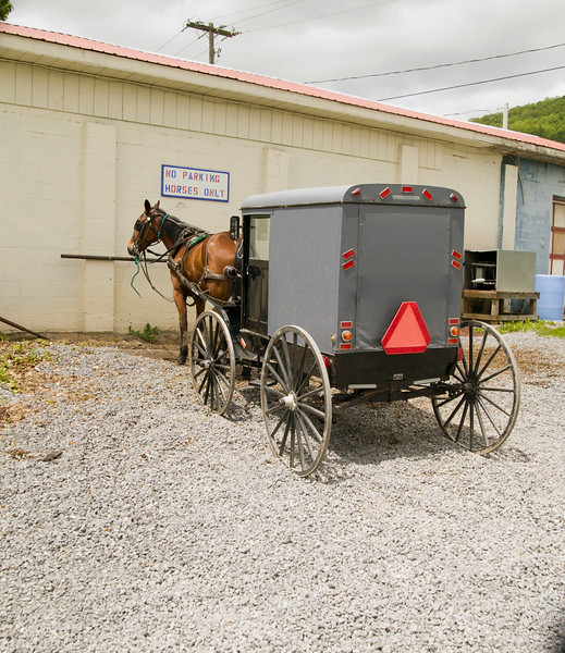 Amish horse and buggy parked waiting for the family.