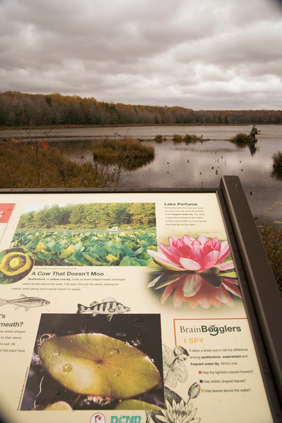 A vertical stock photograph of signage on the Bog Trail in Black Moshannon State Park,Pennsylvania,explaining natural elements that can be found in the bog.
