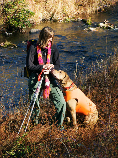 A vertical stock photo of of a young lady and her dog , beautiful fall day,standing near trout stream