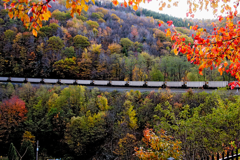 A horizontal stock photograph showing a line of empty coal cars being pulled up the grade at Horseshe curve,framed by beautiful backlit autumn leaves. Located in Altoona Pennsylvania.