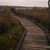 A vertical stock photograph of a couple walking on a boardwalk which is part of the Bog Trail in Black Moshannon State Park,Pennsylvania.