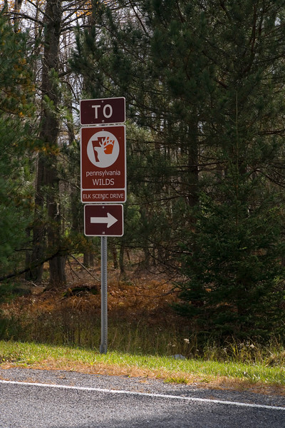 A vertical stock photograph of a road sign indicating Elk scenic drive in Elk County Pennsylvania.