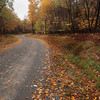 A horizontal stock photo of a gravel road winding through a fall colored hardwood forest. Built in the 1930's in central Pennsylvania by the civilian conservation corp.