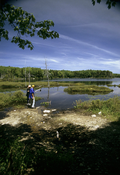 A stock photograph of  Two  teenage boys standing on the shore of a wilderness pond. Beautiful blue sky with white clouds.