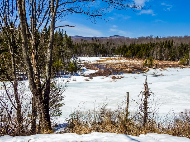 Early Spring at Shep Meadow,Southern Vermont.