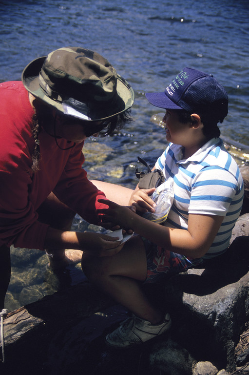 A stock photograph aTeenage girl providing  first aid to young boy outdoors