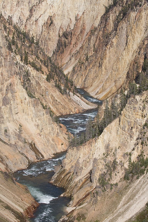 The Yellowstone River canyon below the Lower Falls.